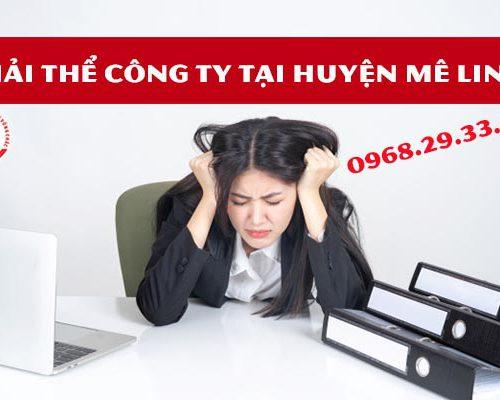 Giải thể công ty tại huyện Mê Linh