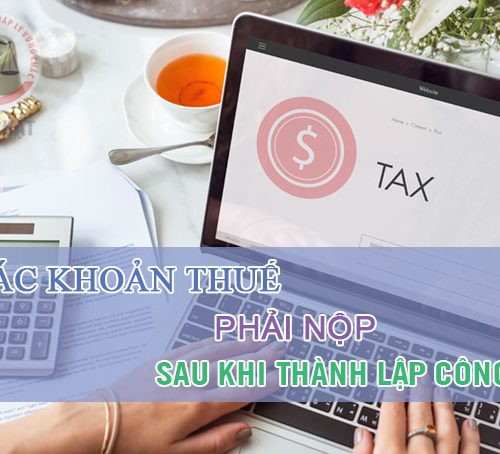 Các loại thuế phải nộp sau khi thành lập công ty